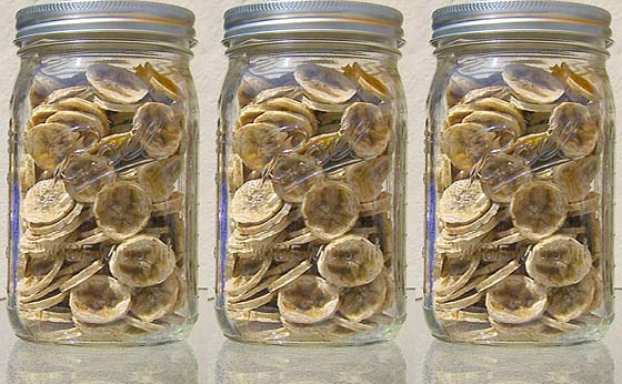 how to make dried banana chips in a dehydrator