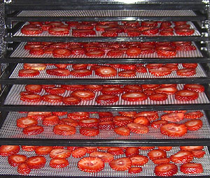 dehydrate strawberries with excalibur