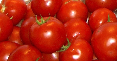 mouth-watering-tomatoes