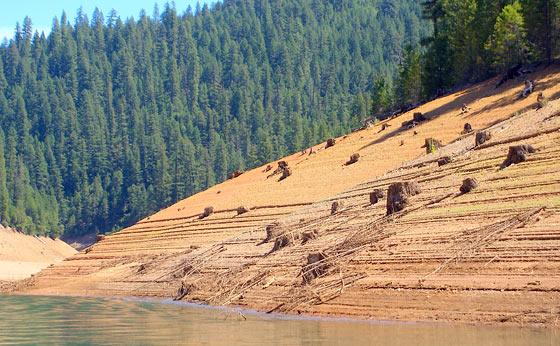 low-water-at-trinity-lake