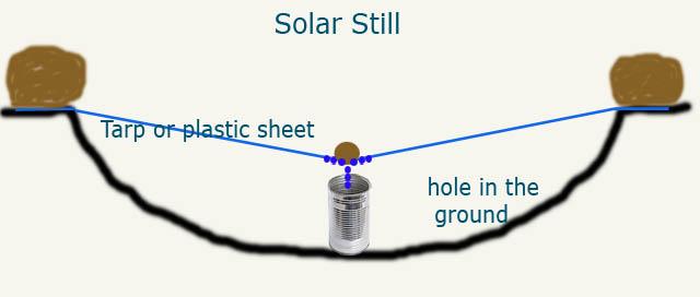 how-to-make-a-solar-still