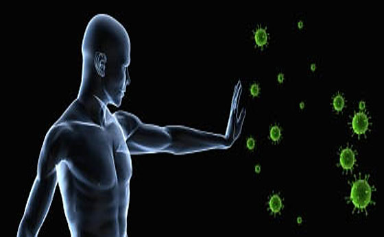 Natural Remedies To Boost Immune System – 12/29/11