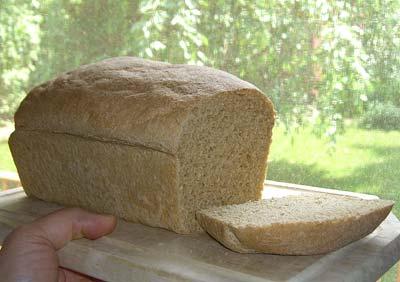 solar-oven-bread-tastes-yummy