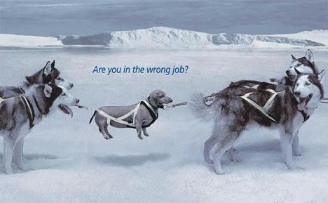 are-you-in-the-wrong-job