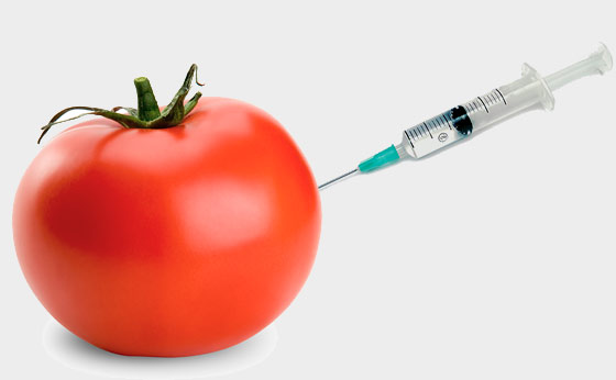 Frequently asked questions on genetically modified foods