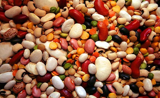 beans-and-legumes-food-storage