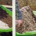 best-garden-soil