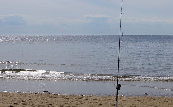 fishing-at-race-point