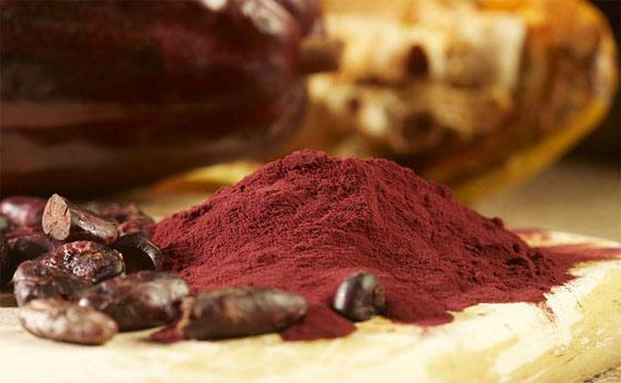 cocoa-flavanols-improve-memory