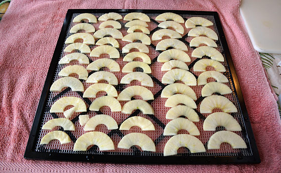 apple-slices-on-dehydrator-tray