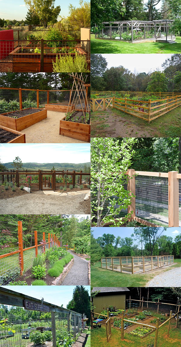 fence for vegetable garden - Garden Ideas To Keep Animals Out