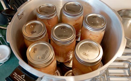 chicken-jars-in-pressure-canner