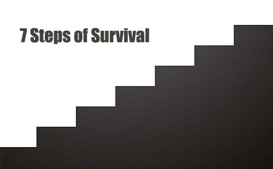 7-steps-of-survival