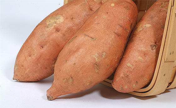 how-to-grow-sweet-potatoes