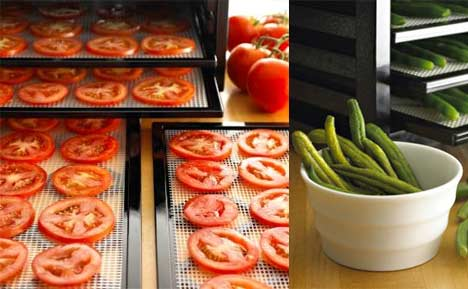 Food Dehydrator Basics