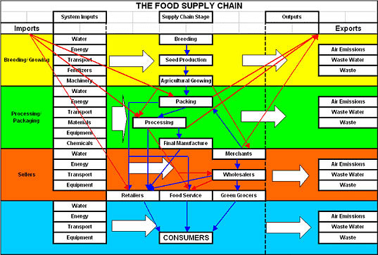 Grocery Food Supply Chain, Risks and Survival