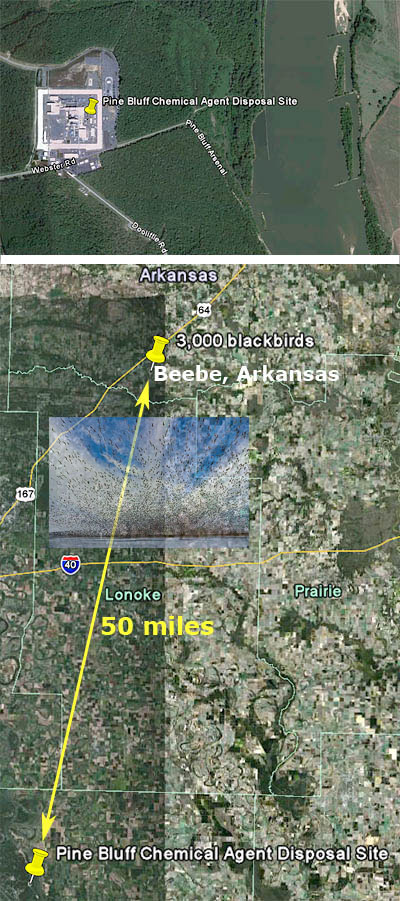beebe-arkansas-bird-kill-possible-explanation