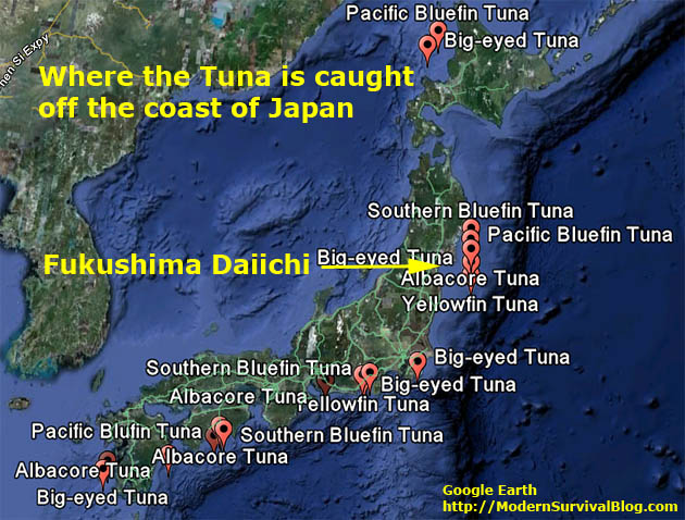 tuna-fishing-locations-japan