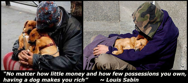 no-matter-how-little-money-and-how-few-possessions-you-own-having-a-dog-makes-you-rich