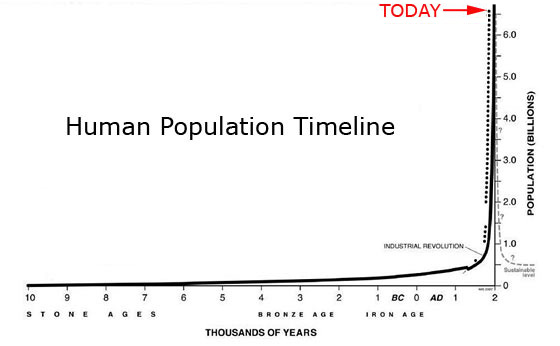 Stunning World Population Growth, Critical Systems, And Human Risks
