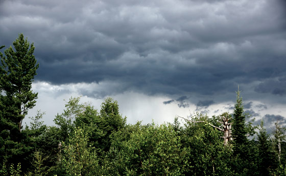 Storm Clouds Gathering, and the Reasons Why Preppers Prep