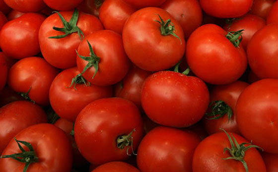 5 Tomato Tips And How To Dehydrate Them