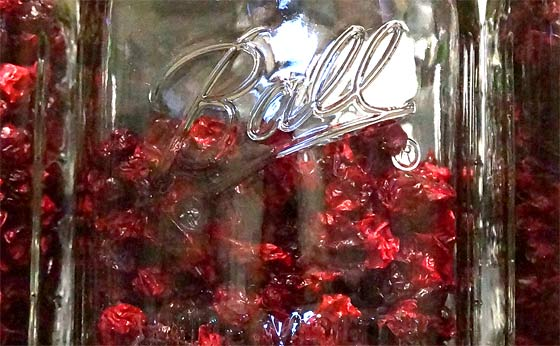 how-to-dehydrate-cranberries