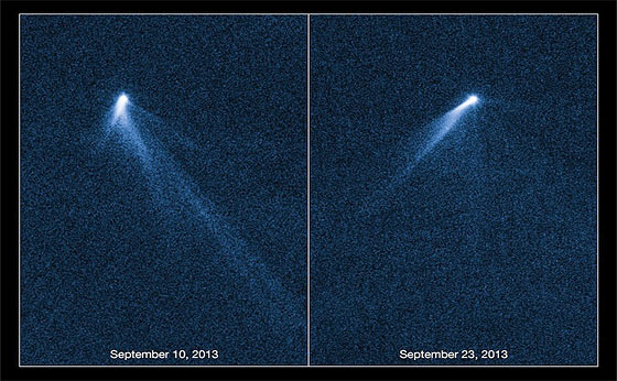 six-tail-asteroid