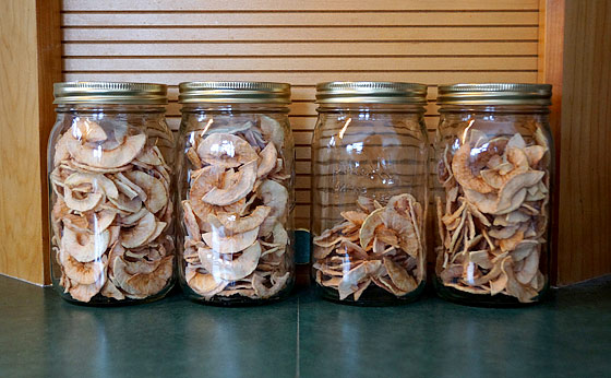How To Dehydrate Apple Slices With A Dehydrator