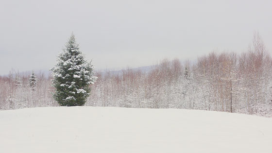 winter-wonderland-3