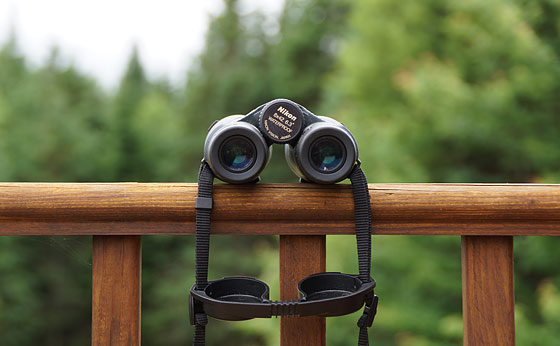 Good Binoculars For Preparedness