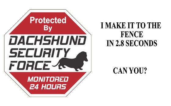 dachshund-security-force
