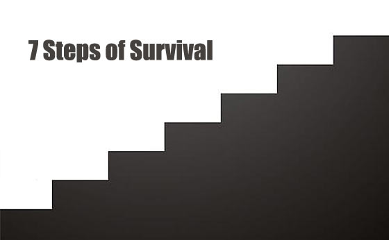 The Seven Steps of Survival