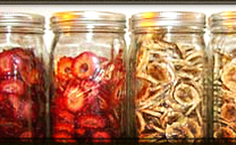 Dehydrated Food Shelf Life – What Affects It, and My Experience