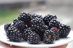 Blackberries ORAC value