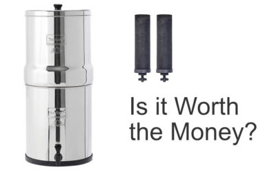 The Berkey Water Filter is Expensive – Is it Worth the Money?