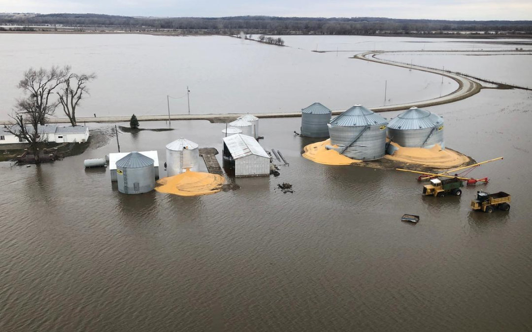 Crops flooded in the midwest.