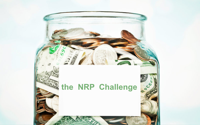 The 'NRP & Blue' Donation Challenge