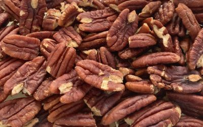 8 NUTS Low In Carbs For Keto Diet Snacks